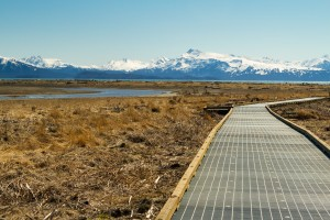 Beluga Slough Boardwalk Installation